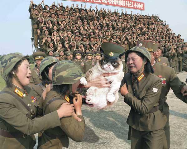 kim-jong-un-grumpy-cat