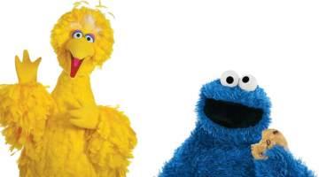 cookie monster ohne haare beitragsbild