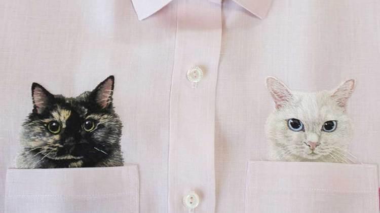 Katzen in Brusttaschen