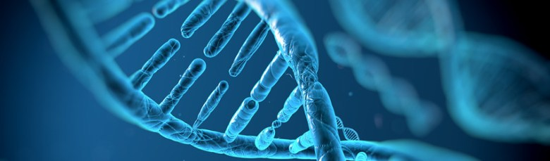 Melatonin and DNA