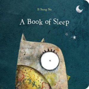 A-Book-of-Sleep-0