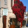 Fotoalbum – Zypern