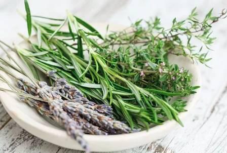 Voňavé francouzské bylinky