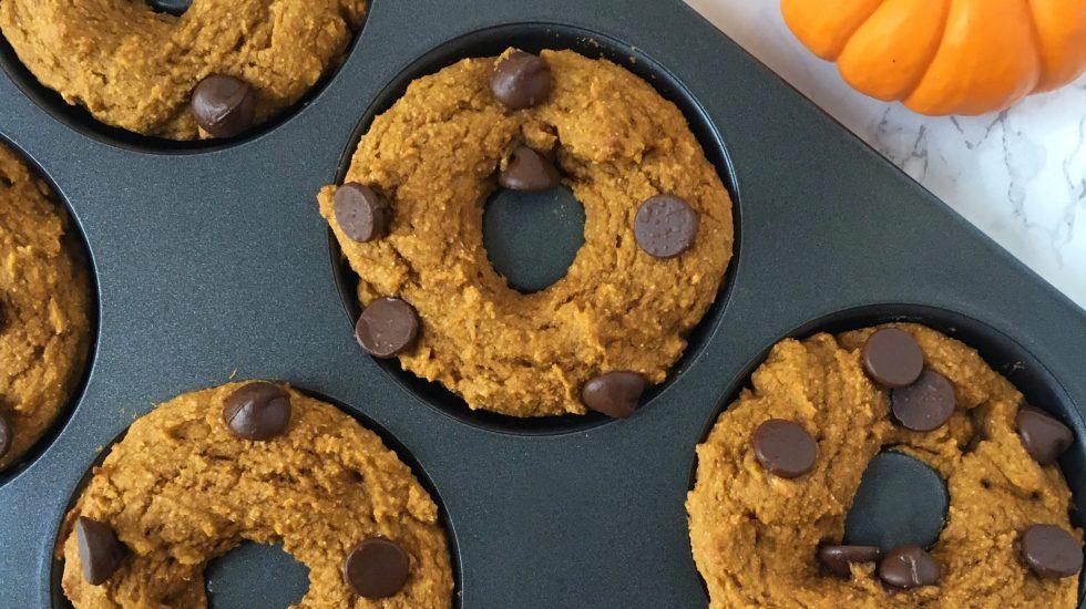 Healthy Chocolate Chip Pumpkin Protein Doughnuts