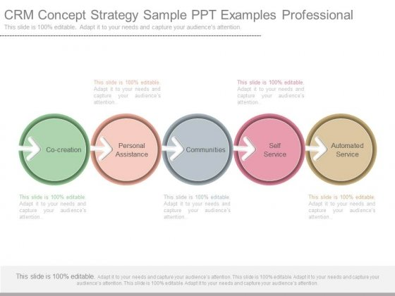 Crm Strategy Template Action Following Gamification