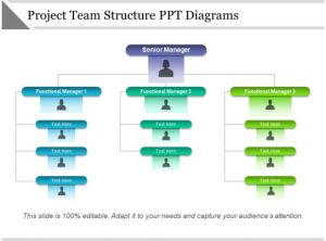 Project Team Structure Ppt Diagrams | Templates PowerPoint
