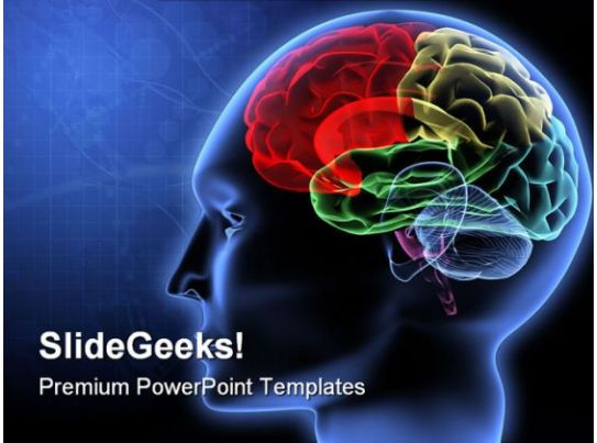 Brain Science PowerPoint Template 0610 Graphics Presentation Background For PowerPoint PPT