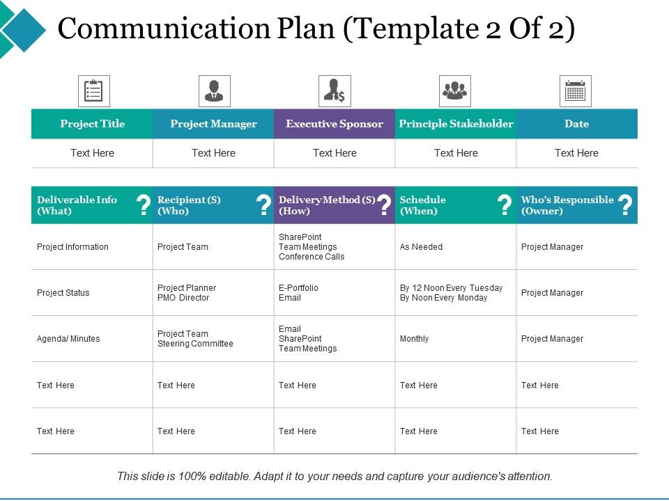 Communication Plan Principle Stakeholder Project Manager