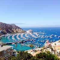 Adventures on Catalina Island – Part 2