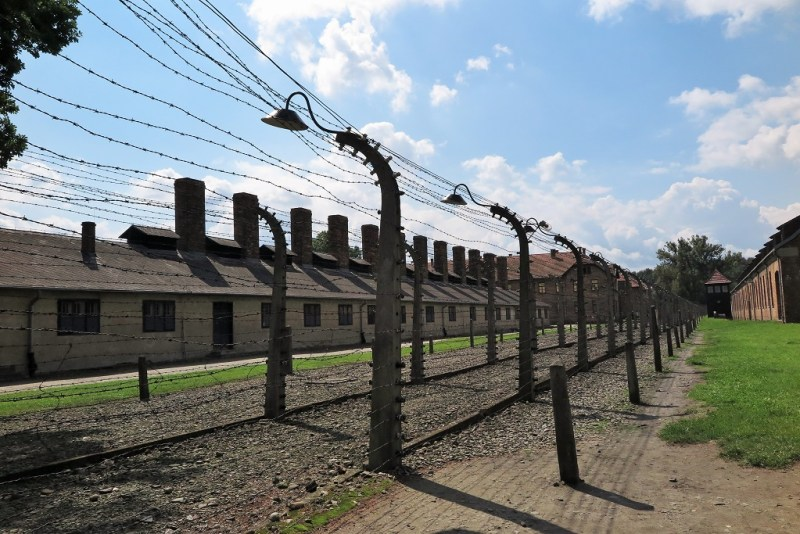 Auschwitz barbed wire
