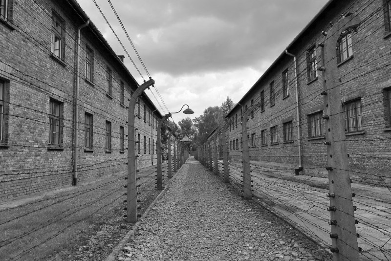 Auschwitz in between barbed wire b&w