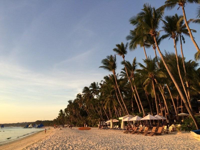 beach during dusk