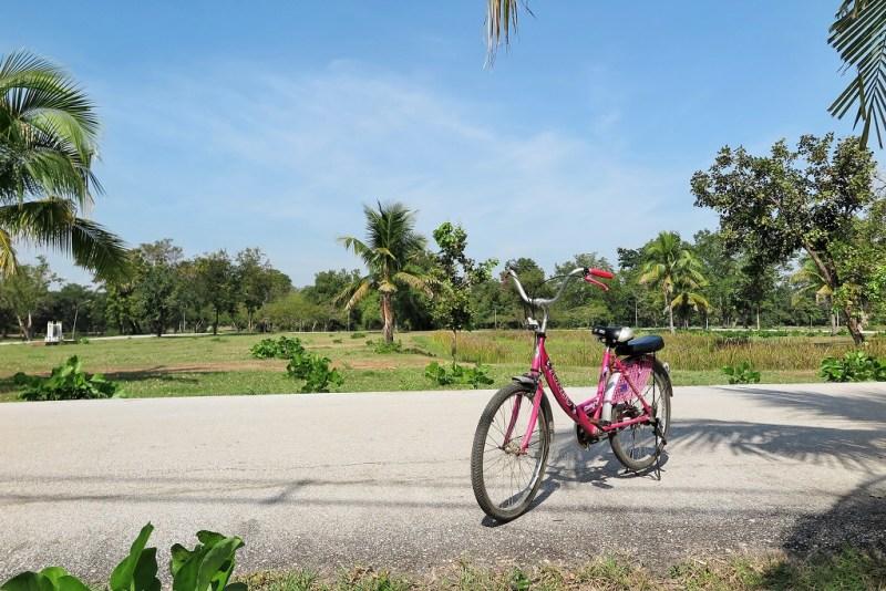 biking in Sukhothai 1