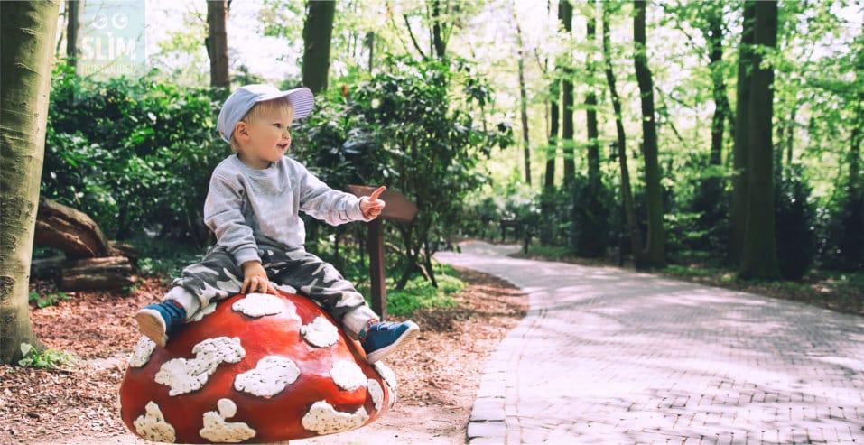 kind-op-paddenstoel-in-de-efteling