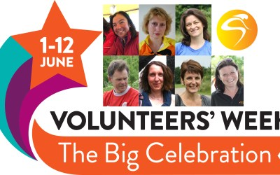 Meet A Few Of Our Parent Volunteers
