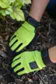 6. Gloves