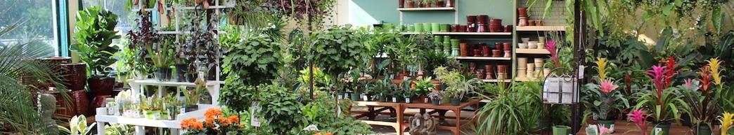 Open Concord Sloat Garden Center