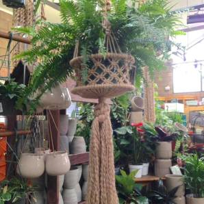 Give the gift of boho-chic with macrame plant hangers