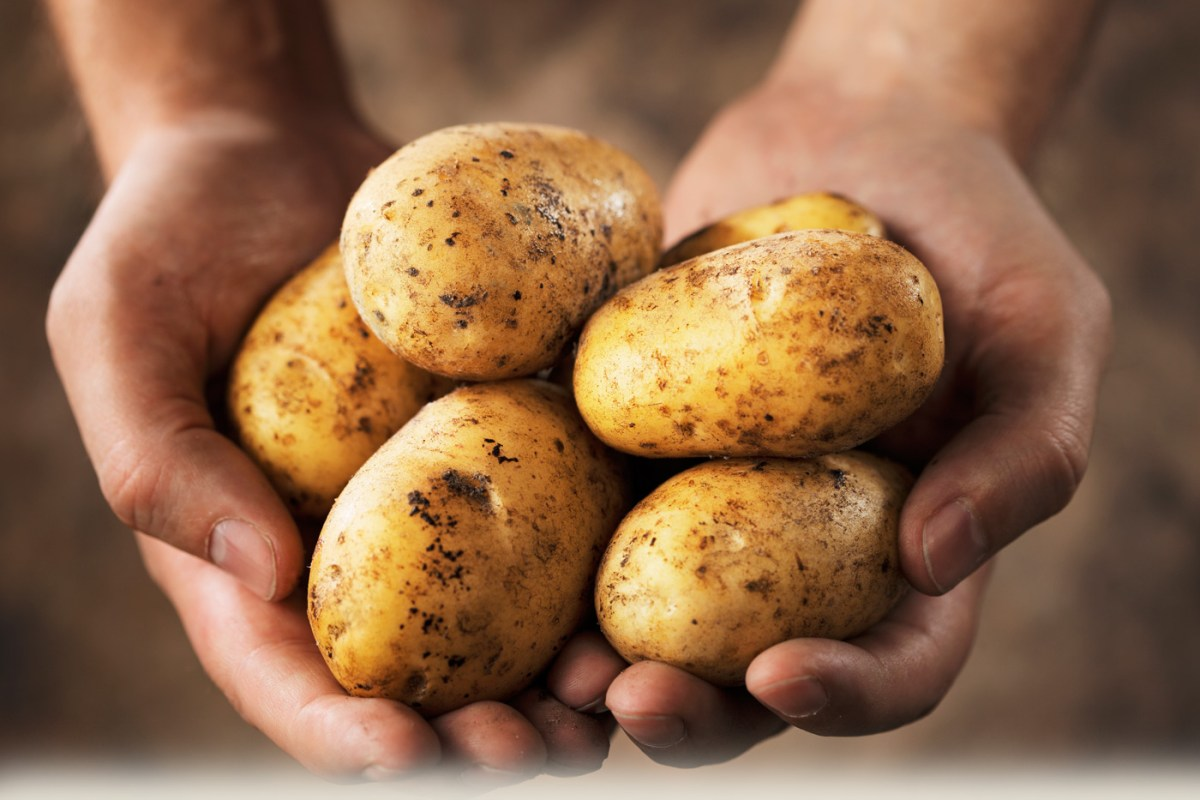 krump