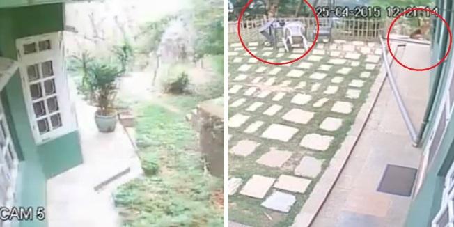nepal potres snimke