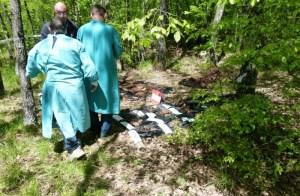 srb ustanak u srbu dan ustanka pokolj četnici partizani