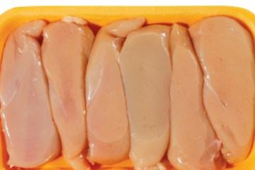pileća prsa, piletina, salmonela