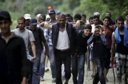 imigranti, azilanti, imigranti u hrvatskoj, plenković