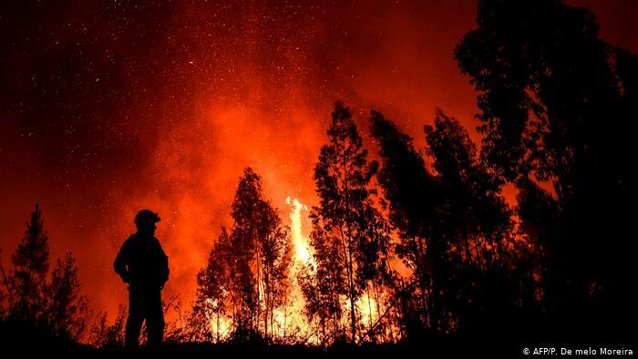 Пожар над населбата Усје, пожарникарите објавуваат видео