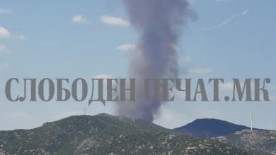 пожар гевгелија