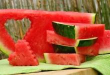 лубеница