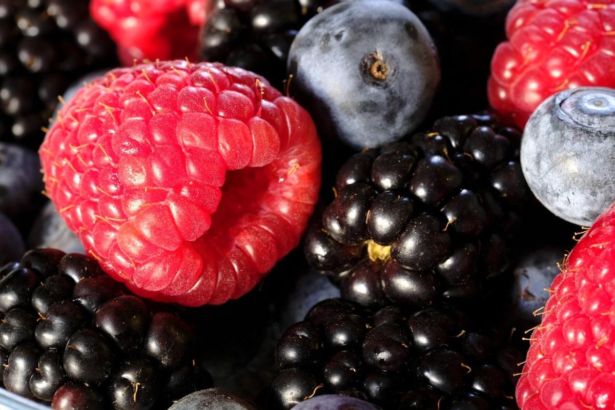 ИСХРАНА ВО БОЈА: Виолетови продукти богати со витамини и минерали