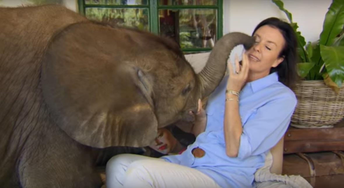 ГОЛЕМА ЉУБОВ: Го спасила малото слонче од сигурна смрт, а сега се нераздвојни пријатели