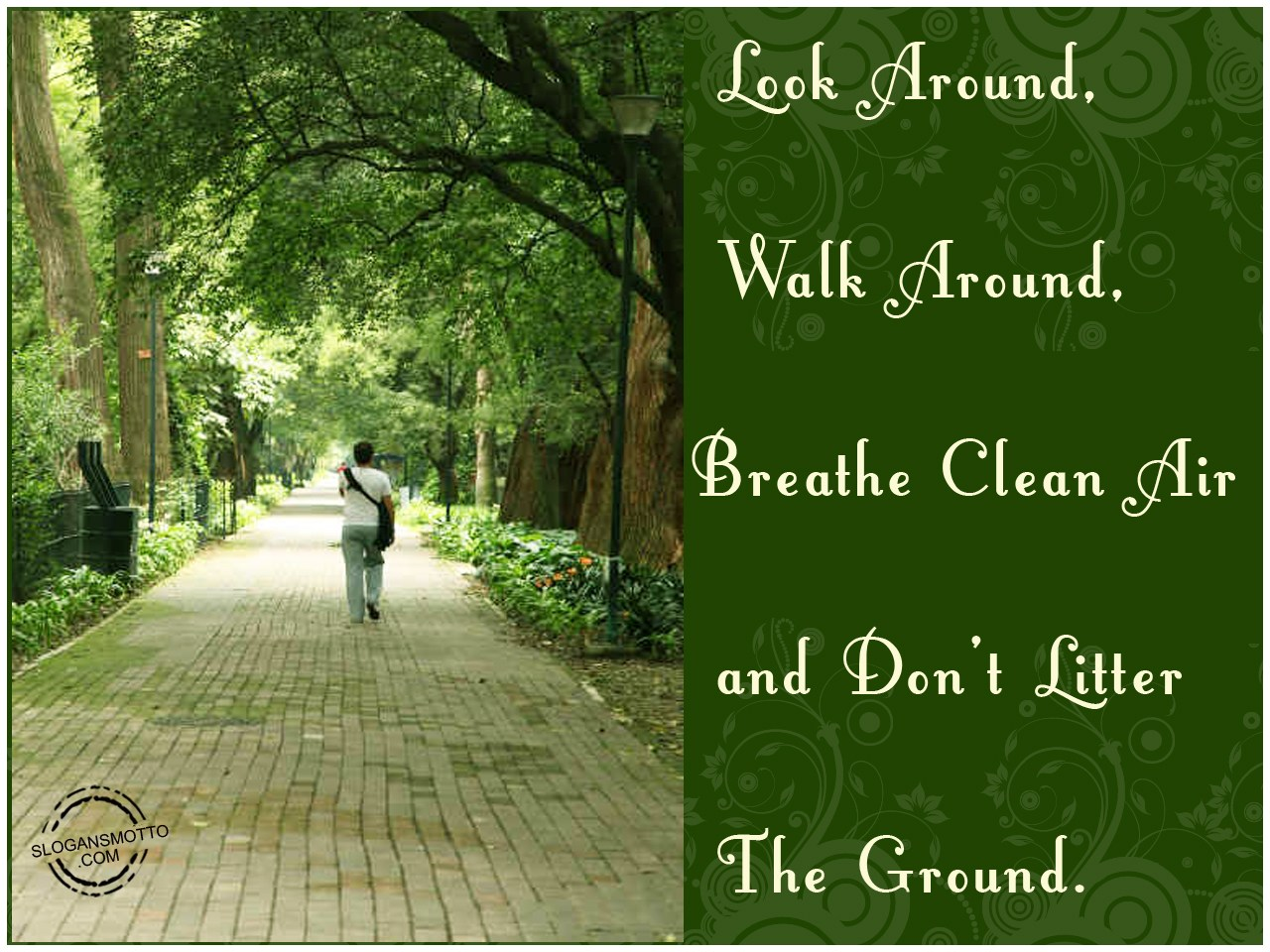 Quotes About Cleanliness Of Surroundings Quotesgram