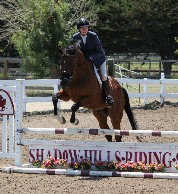 Shadow Hill Riding School