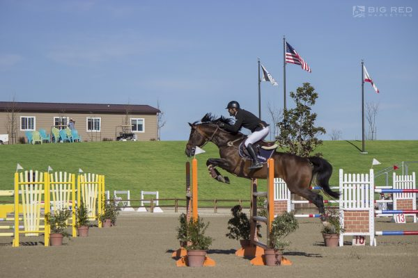 Jump into the Fun of a Hunter/Jumper Show at the Paso Robles Horse Park   SLO Horse News
