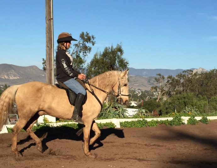 Dressage Training for Every Horse | SLO Horse News