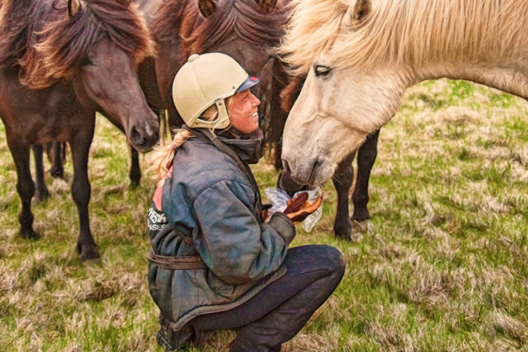 The Sweet Scent, Snorts, Soft Sounds and Shoves of a Horse's Nose | SLO Horse News