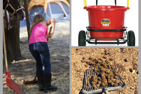 Tools for the Poop Scoop Boogie | SLO Horse News