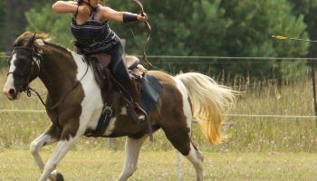 Release Your Inner Warrior : Mounted Archery Clinic