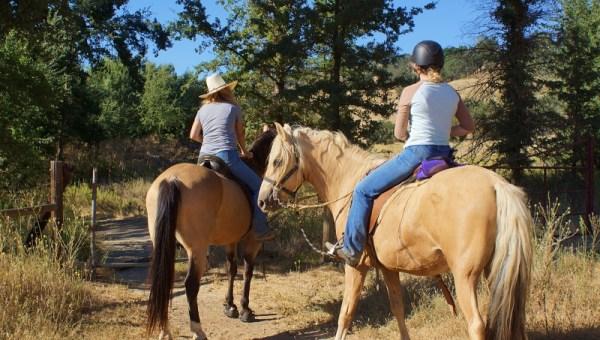 Developing the Horse Camp at Santa Margarita Lake Hits a Little Snag   SLO Horse News