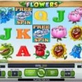 Flowers free spins reel