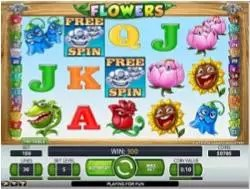 Flowers free spins reel