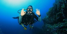 7 of the Best Dive Destinations in South Africa
