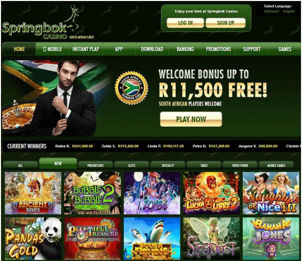 Springbok-casino-SA-