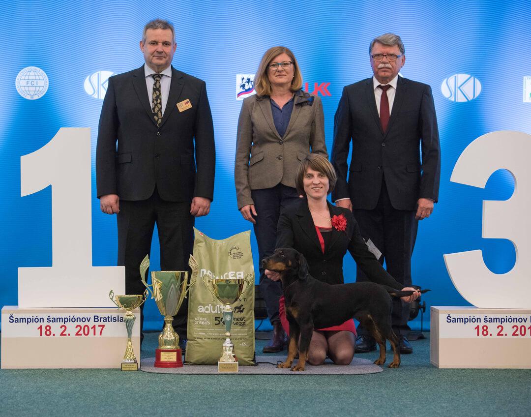 BEST IN SHOW Slovenský kopov CORALINA Z JARKINHO ÚDOLIA, Gorelčíková Jaroslava R. BEST IN SHOW