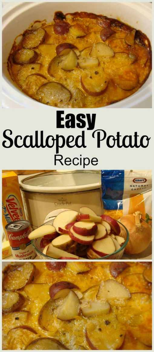 Easy Slow Cooker Scalloped Potatoes. Find this and more delicious crockpot recipes at https://www.slowcookerkitchen.com