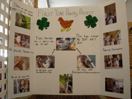 poultryposter