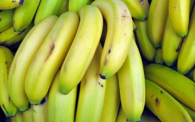 Bananamour – Letz lov' fair bananas