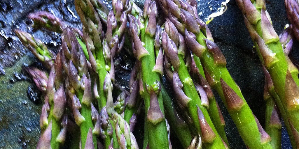 Asparagus with sweet purple tips on the Slow Food Russian River's grill. — in Sebastopol, California.