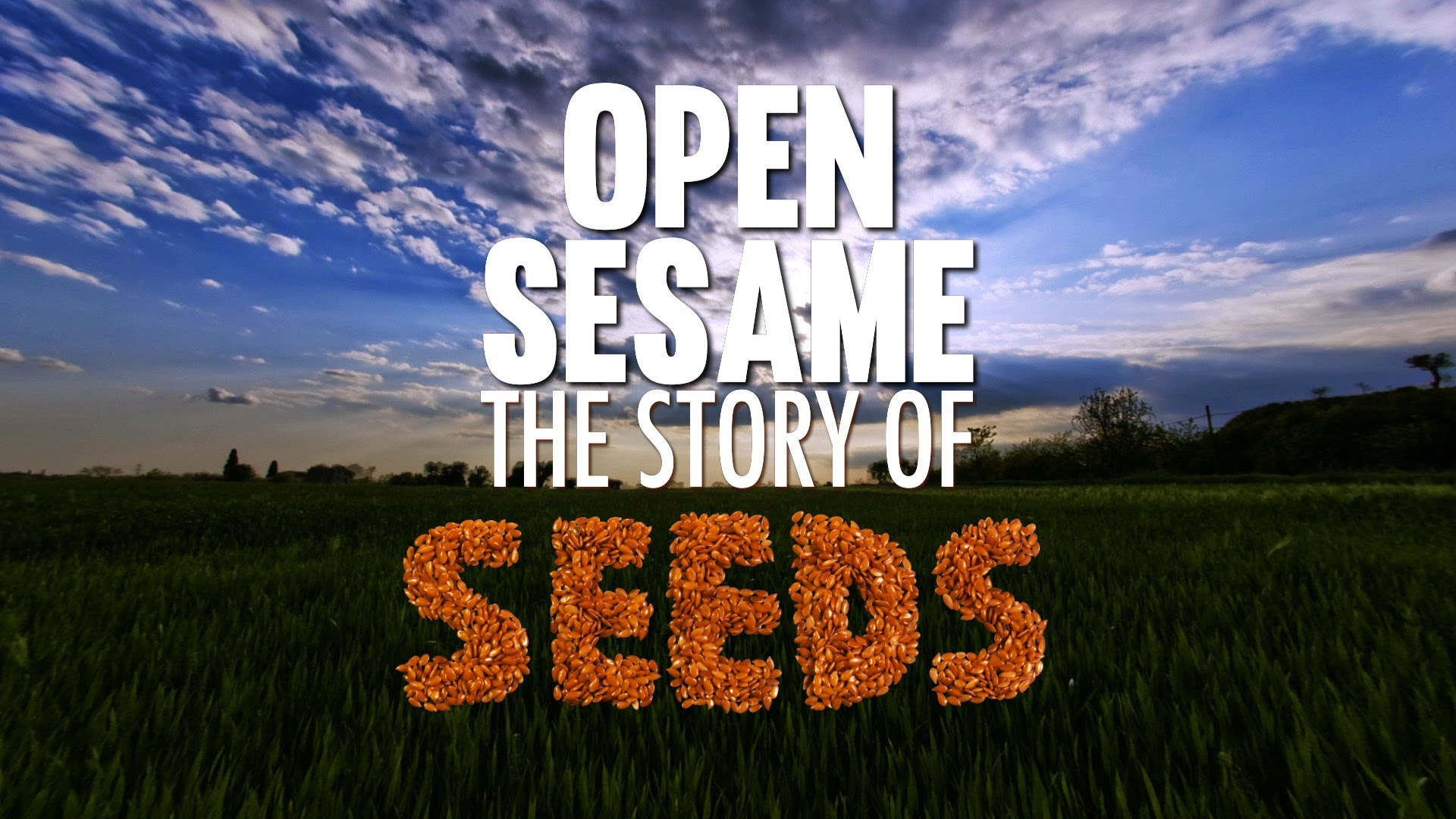 Open Sesame – The Story of Seeds
